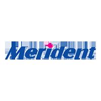 merident-logo logo - شرکت مریدنت